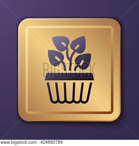 Purple Indoor Plant Ivy In A Pot Icon Isolated On Purple Background. Branch With Leaves. Gold Square