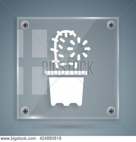 White Cactus Peyote In Pot Icon Isolated On Grey Background. Plant Growing In A Pot. Potted Plant Si