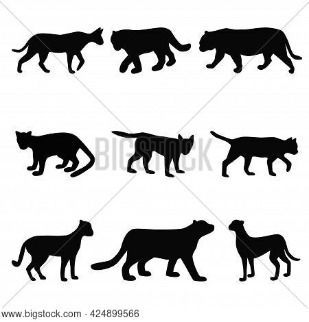 Collection Of Cat Family Black Silhouettes, Felines Simple Shapes Set Vector Illustration