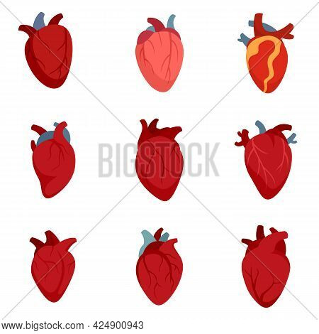 Human Heart Icons Set. Flat Set Of Human Heart Vector Icons Isolated On White Background