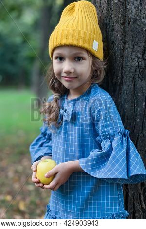 Child Picking Apples On Farm In Autumn. Little Girl Playing In Apple Tree Orchard. Healthy Nutrition