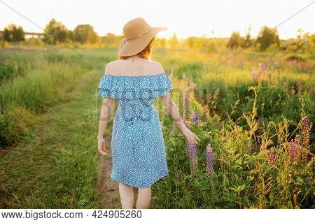 A Woman Walk The Field Touches The Lupines With Her Hand And Looks At The Sunset