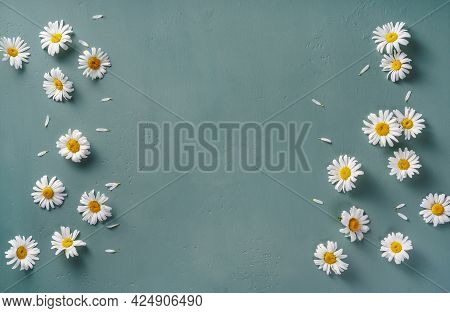 Chamomile Flowers On Blue Turquoise Background With Copy Space. Mockup With White Flowers. Top View