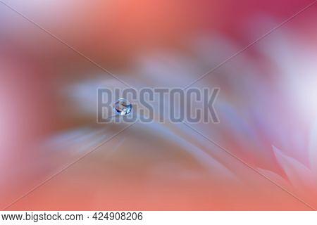 Beautiful macro shot of magic flowers.Border art design. Magic light.Extreme close up macro photography.Conceptual abstract image.Orange and Pink Background.Fantasy Art.Creative Wallpaper.Beautiful Nature Background.Amazing Spring Flowers.Water drop.