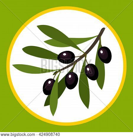 Stylized Drawn Olive Fruits On A Branch With Leaves. Vector Illustration.
