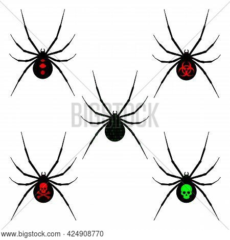 Black Silhouettes Of Spiders On A White Background. Spider Black Widow. Vector Illustration.