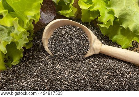 Chia Seeds. Chia In A Wooden Spoon Around Lettuce Leaves. Healthy Food. Weightloss Remedy