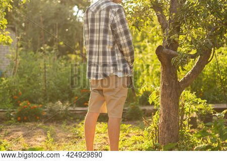 Rear View Of Young Person Standing Outdoor And Piss Under The Trees