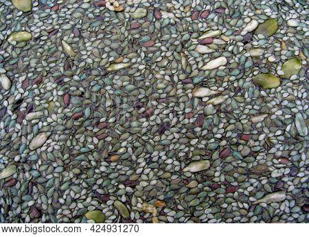 Raw Organic Green Spirulina And Seed Crusts Close Up