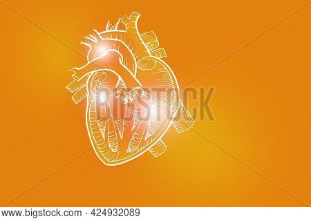 Handrawn Illustration Of Human Heart On Positive Orange Background. Medical, Science Set With Main H