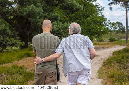 Gay Couple Walking In Park On Sunny Day, Back View