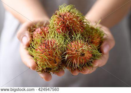 Ripe Rambutan Fruit Holding By Woman Hand, Rambutan Is Tropical Fruit And Native Southeast Asia, Jui
