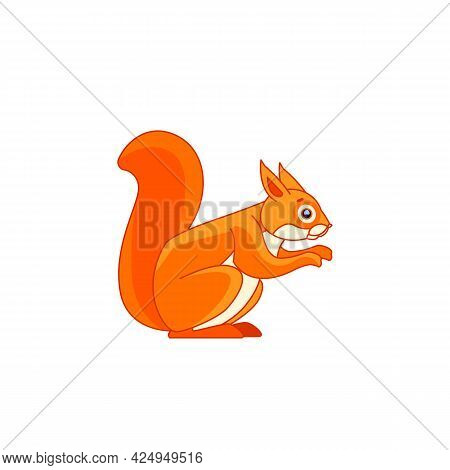 Red Squirrel Feeding. Tail Up. Cartoon Character Of A Rodent Mammal Animal. A Wild Forest Creature W