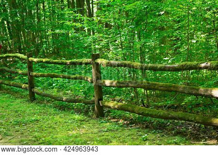 Wooden Path And Bridge In The Forest. Eco Trail Among Boulders And Trees On A Summer Day. The Concep