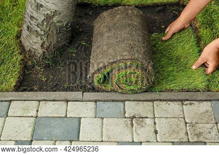 Young Man Laying Grass Sod On Ground In Garden, Closeup