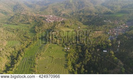 Village Among Rice Fields And Terraces In Asia. Aerial View Farmland With Rice Terrace Agricultural