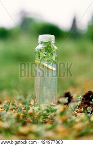 Bottle Of Water With Lemon And Mint Stands On The Ground Near Fir Cones