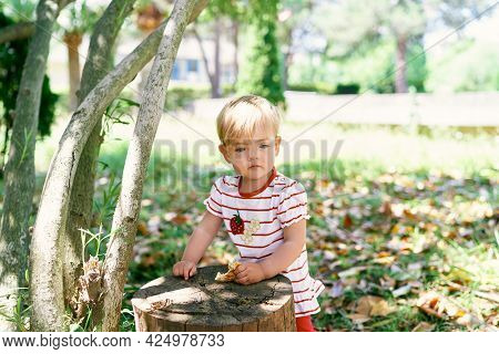 Kid With A Pancake In His Hand Stands Near A Stump In The Park