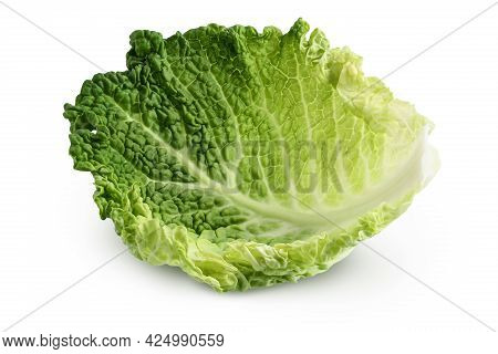 Savoy Cabbage Leaf Isolated On White Background With Clipping Path And Full Depth Of Field