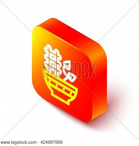 Isometric Line Plant In Pot Icon Isolated On White Background. Plant Growing In A Pot. Potted Plant