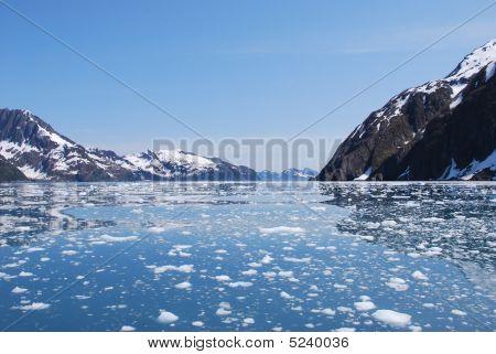 Glacial Icebergs