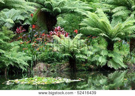 Terra Nostra Park, Furnas, Azores