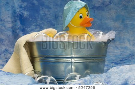 Single Duck In Tub