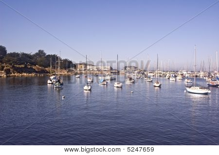 Yachts On Monterey Bay
