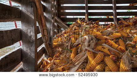 Corn Crib Pile