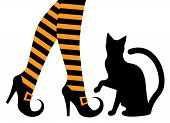 witches feet in striped socks and shoes and a black cat poster