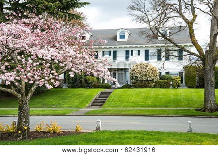 Historic Classic American Home