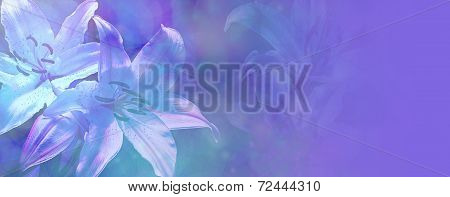 Beautiful Blue Wedding Lillies Banner
