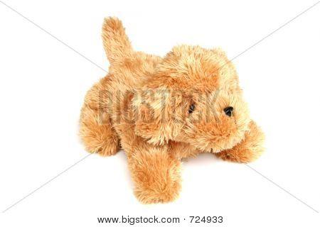 Stuffed Toy Dog