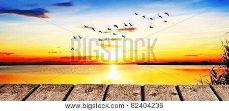 paisaje panoramic of the ocean