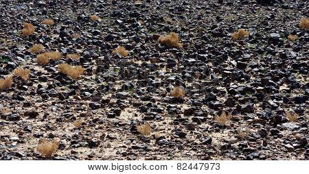 Black stone field in the desert