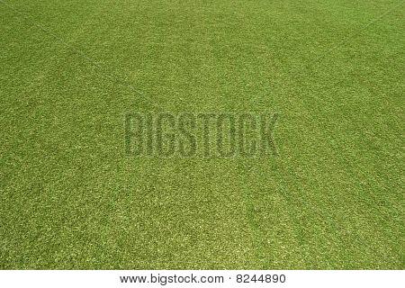 Texture Football Pitch