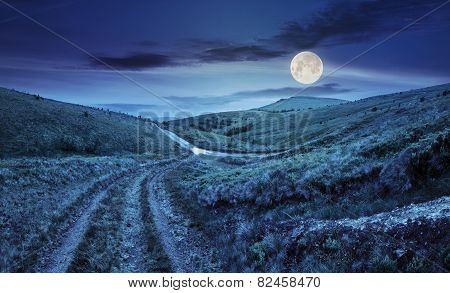 Path Through Highland Meadows At Night