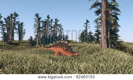 walking kentrosaurus