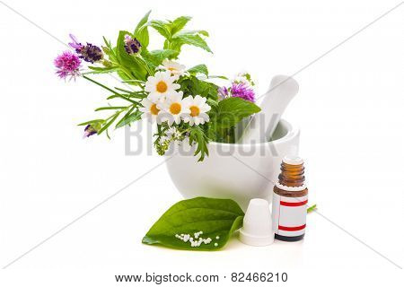 Healing herbs and amortar. Alternative medicine concept poster
