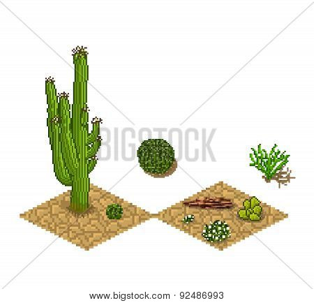 Pixel art cactus tilesets and plants. Vector game assets