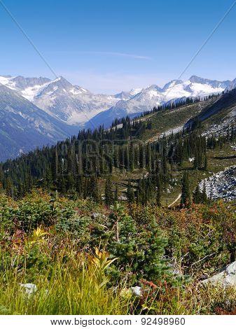 Harmony Lakes Trail (4)