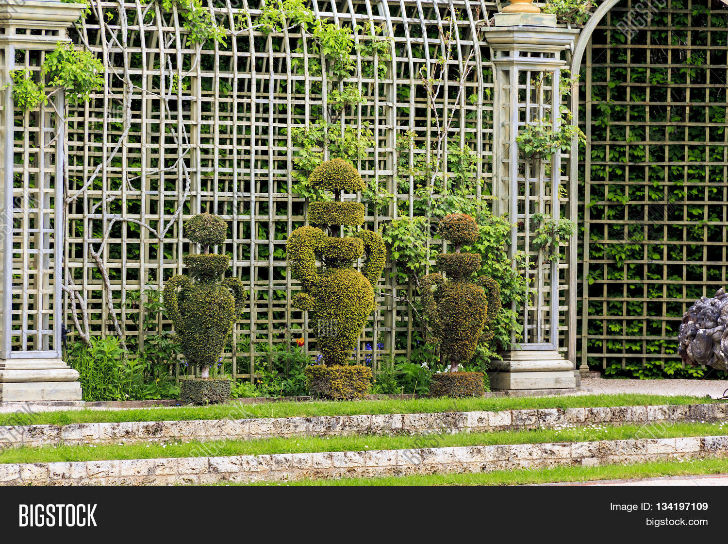 "VERSAILLES, FRANCE - MAY 12, 2013: These trees are cut in the form of antique vases which corresponds to the spirit of bosquets ""Enceladus""."