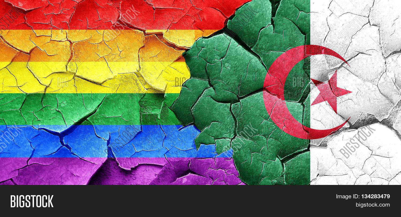 Algeria gay Gay Sauna