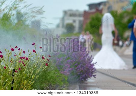 flowers in water droplets. Summer in the city with bride on background