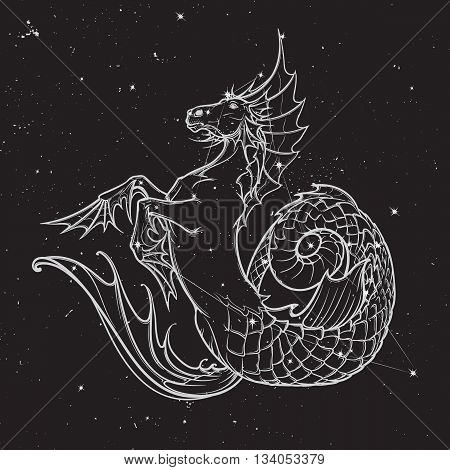 Hippocampus greek mythological creature. Kelpie scottish fairy tale water horse. White sketch on nightsky background with stars. EPS10 vector illustration.