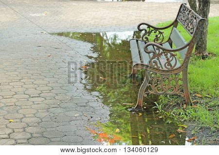 Bench Under The Tree In The Autumn Garden