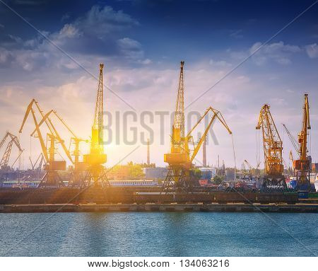 Harbour Level Luffing Cranes in Port. Odessa sea port. Ukraine
