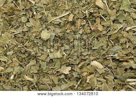 Organic dry Horseradish (Armoracia rusticana) leaves. Macro close up background texture. Top view.