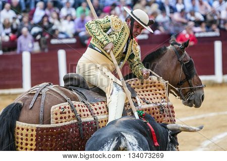 Ubeda Spain - October 3 2010: Picador bullfighter lancer whose job it is to weaken bull's neck muscles in the bullring fo Ubeda Jaen province Spain