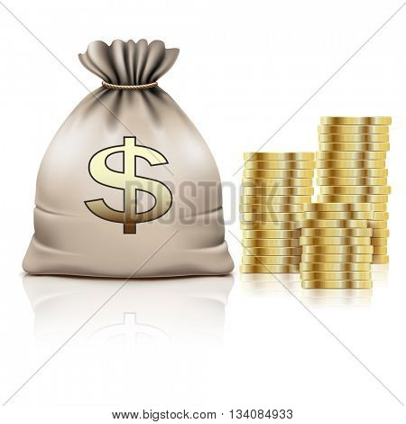 Golden Coins and Bag with the Money and on white background. Dollar Sign, Icon. Vector illustration.